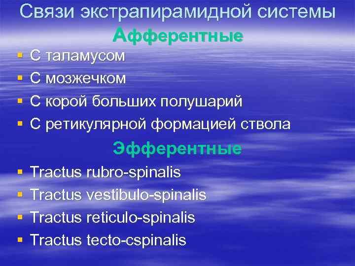 Связи экстрапирамидной системы Афферентные § § С таламусом С мозжечком С корой больших полушарий
