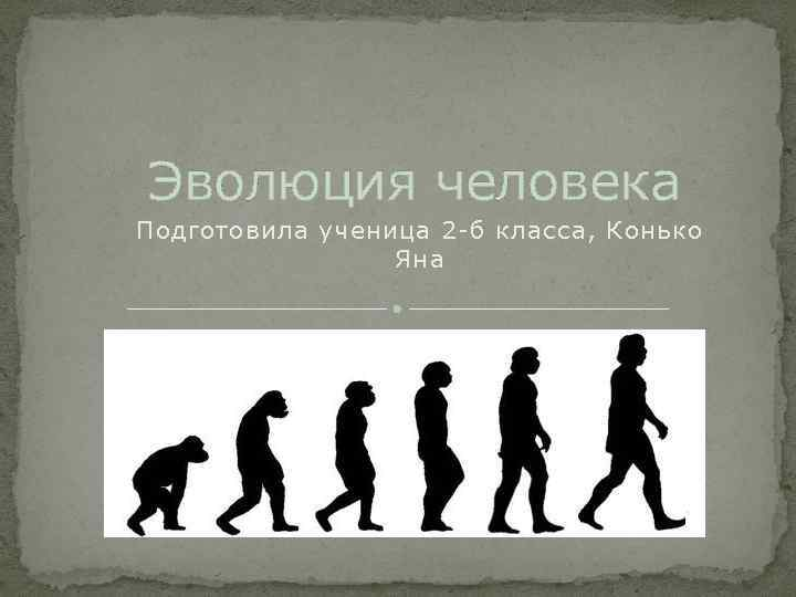 Эволюция человека Подготовила ученица 2 -б класса, Конько Яна
