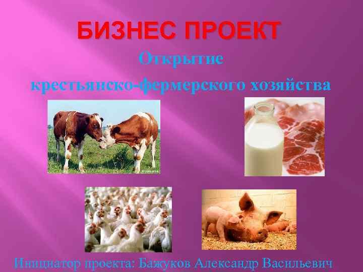 БИЗНЕС ПРОЕКТ Открытие крестьянско-фермерского хозяйства Инициатор проекта: Бажуков Александр Васильевич