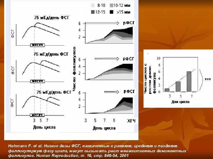 Hohmann F. et al. Низкие дозы ФСГ, назначенные в раннюю, среднюю и позднюю фолликулярную