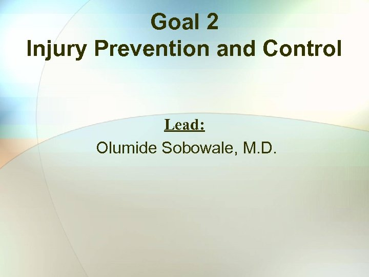 Goal 2 Injury Prevention and Control Lead: Olumide Sobowale, M. D.
