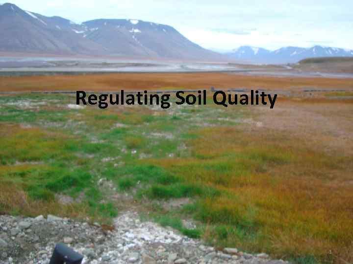 Regulating Soil Quality 1