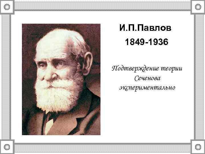 И. П. Павлов 1849 -1936 Подтверждение теории Сеченова экспериментально