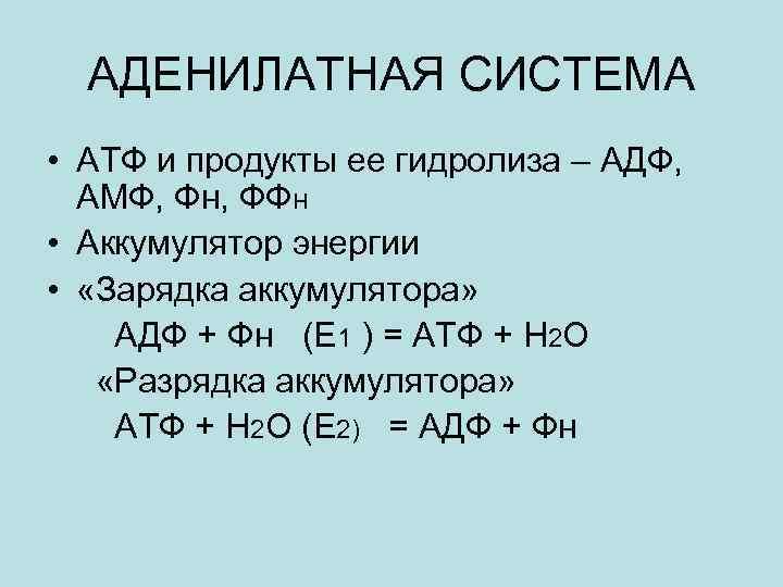 АДЕНИЛАТНАЯ СИСТЕМА • АТФ и продукты ее гидролиза – АДФ, АМФ, Фн, ФФН •