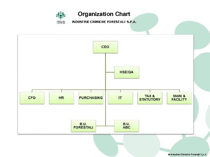 Organization Chart INDUSTRIE CHIMICHE FORESTALI S. P. A. © Industrie Chimiche Forestali S. p.