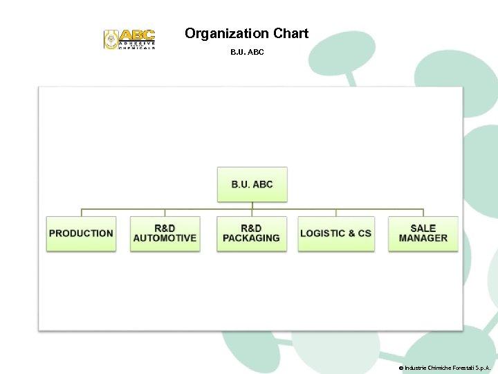 Organization Chart B. U. ABC © Industrie Chimiche Forestali S. p. A.