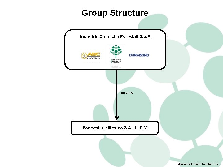 Group Structure Industrie Chimiche Forestali S. p. A. 99, 78 % Forestali de Mexico