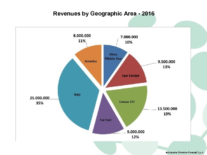 Revenues by Geographic Area - 2016 © Industrie Chimiche Forestali S. p. A.