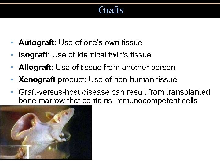 Grafts • Autograft: Use of one's own tissue • Isograft: Use of identical twin's