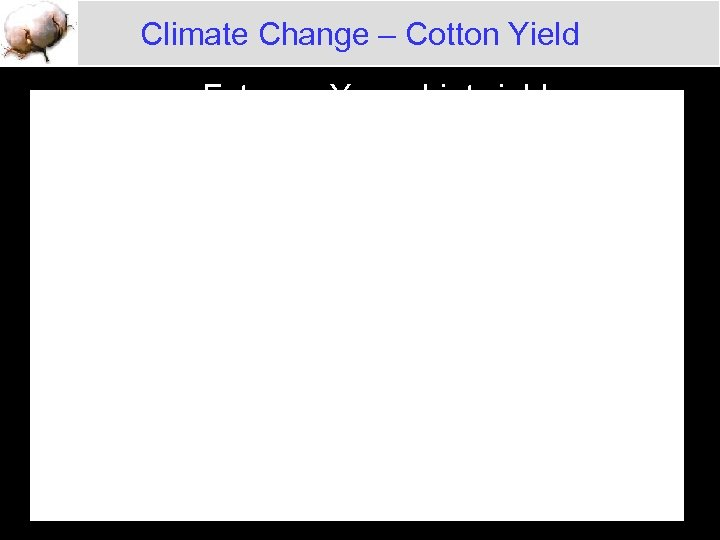 Climate Change – Cotton Yield Extreme Years Lint yield