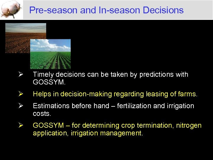 Pre-season and In-season Decisions Ø Timely decisions can be taken by predictions with GOSSYM.