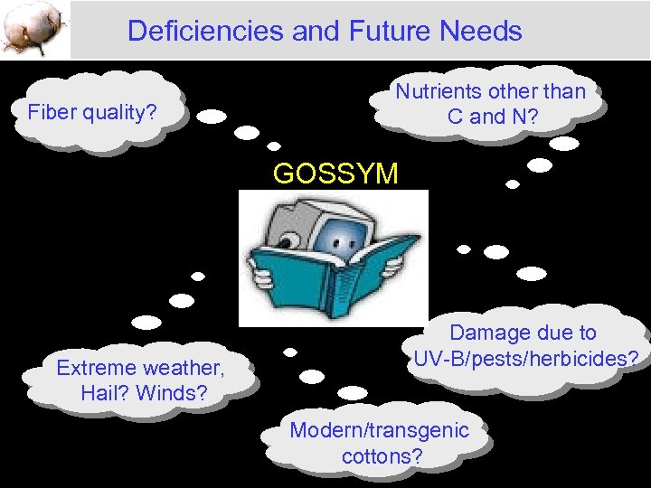 Deficiencies and Future Needs Fiber quality? Nutrients other than C and N? GOSSYM Extreme