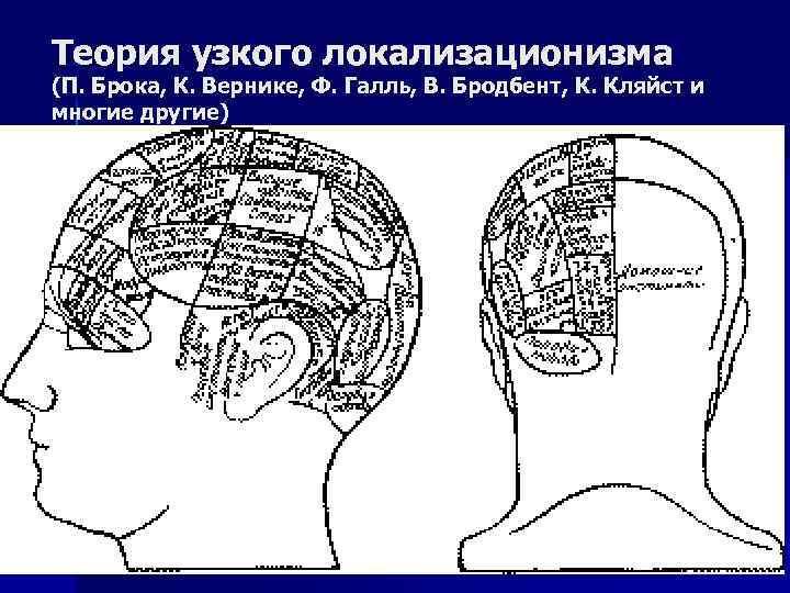 Теория узкого локализационизма (П. Брока, К. Вернике, Ф. Галль, В. Бродбент, К. Кляйст и