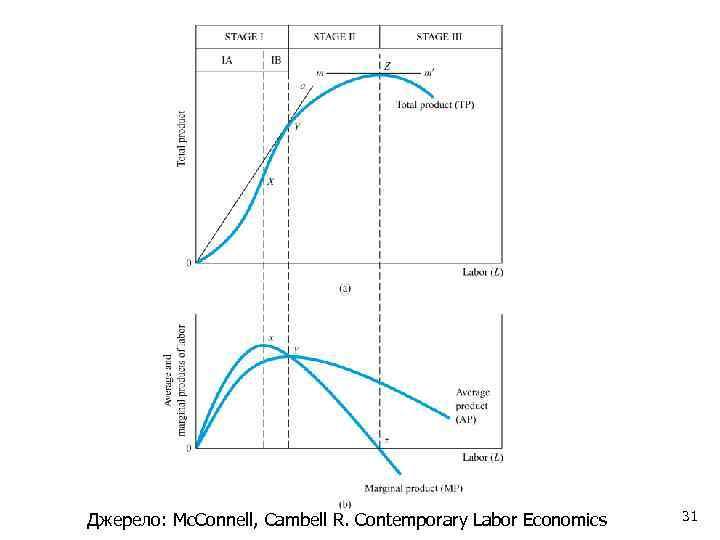 Джерело: Mc. Connell, Cambell R. Contemporary Labor Economics 31