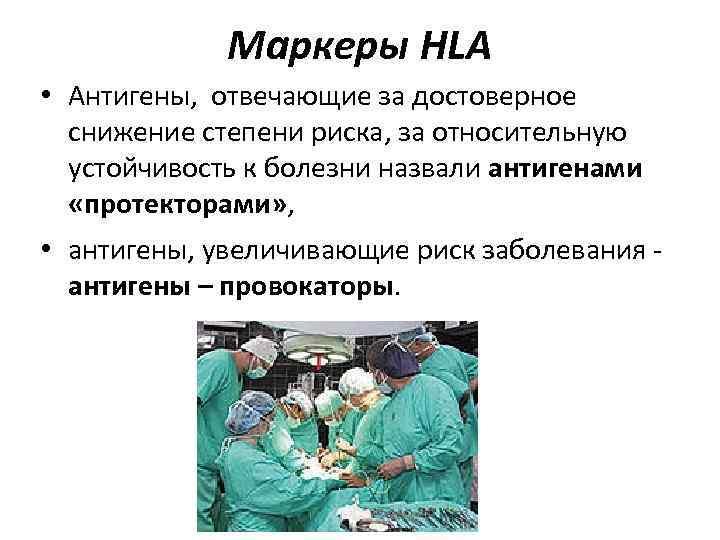 Маркеры HLA • Антигены, отвечающие за достоверное снижение степени риска, за относительную устойчивость к