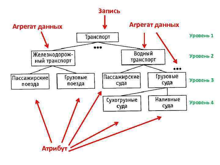 Запись Агрегат данных Уровень 1 Уровень 2 Уровень 3 Уровень 4 Атрибут
