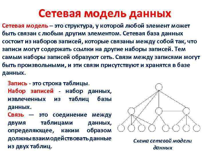 Сетевая модель данных Сетевая модель – это структура, у которой любой элемент может быть