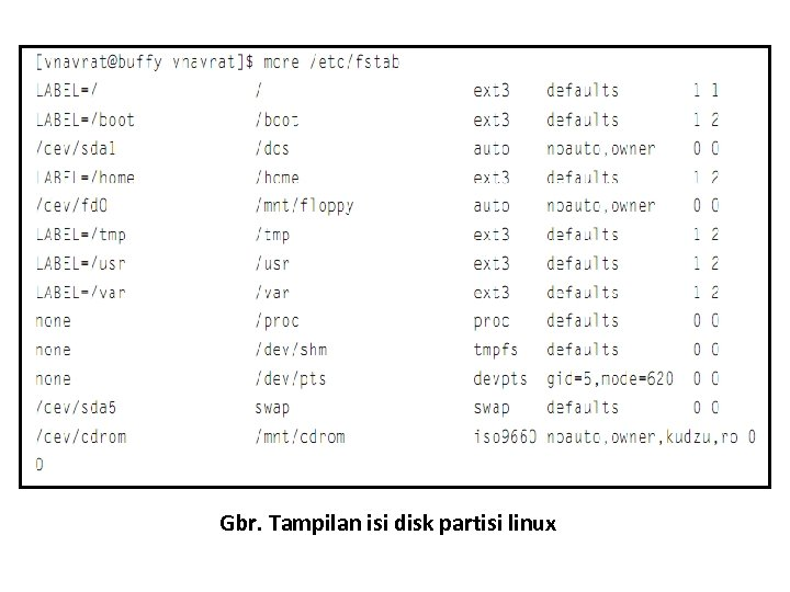 Gbr. Tampilan isi disk partisi linux