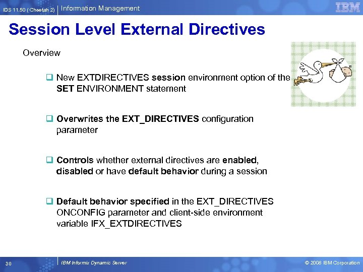 IDS 11. 50 ( Cheetah 2) Information Management Session Level External Directives Overview q