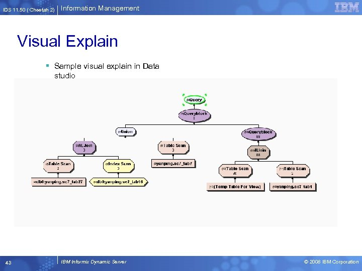 IDS 11. 50 ( Cheetah 2) Information Management Visual Explain § Sample visual explain