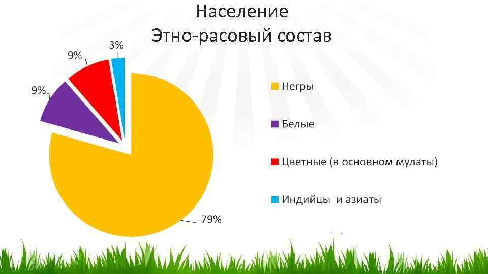 Население Этно-расовый состав