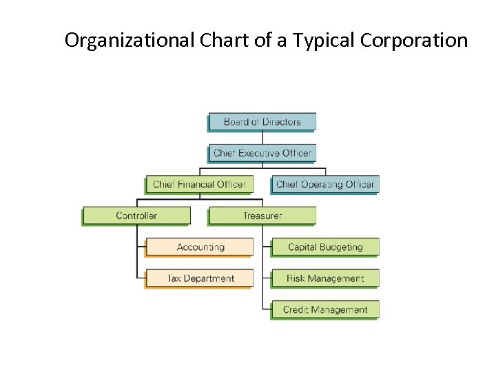 Organizational Chart of a Typical Corporation