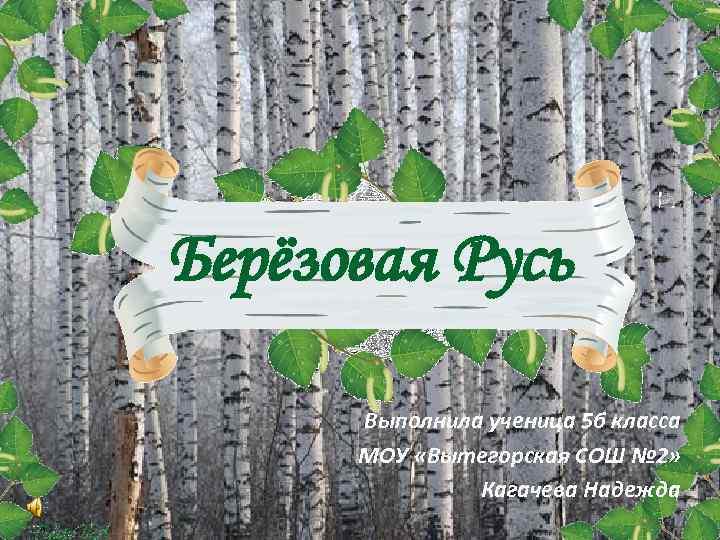Берёзовая Русь Выполнила ученица 5 б класса МОУ «Вытегорская СОШ № 2» Кагачева Надежда