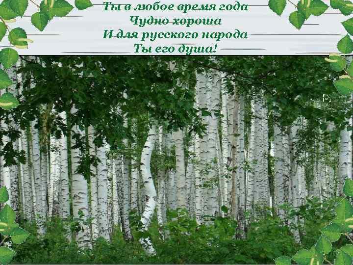 Ты в любое время года Чудно хороша И для русского народа Ты его душа!