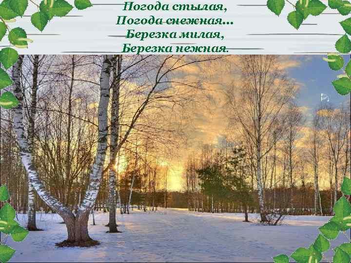 Погода стылая, Погода снежная. . . Березка милая, Березка нежная.