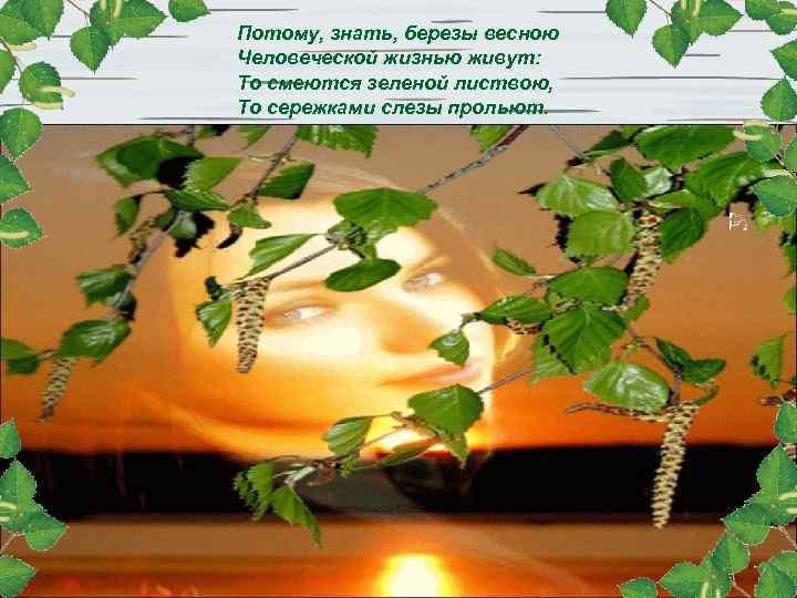 Потому, знать, березы весною Человеческой жизнью живут: То смеются зеленой листвою, То сережками слезы