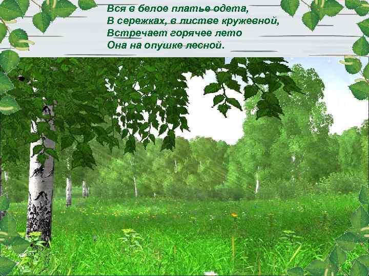 Вся в белое платье одета, В сережках, в листве кружевной, Встречает горячее лето Она