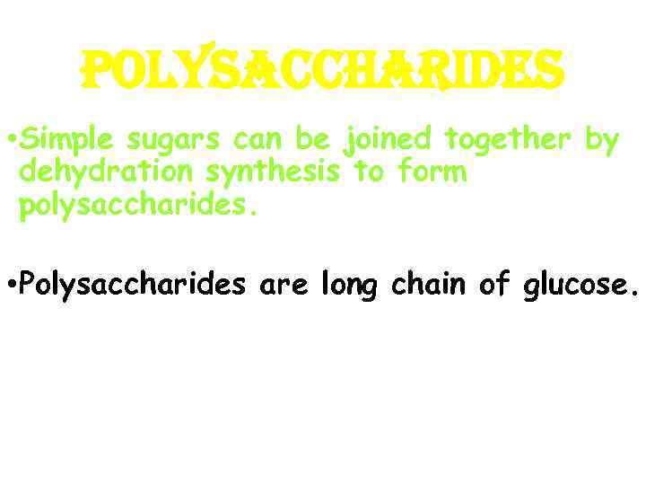 POLYSACCHARIDES • Simple sugars can be joined together by dehydration synthesis to form polysaccharides.