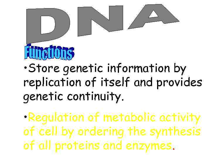 • Store genetic information by replication of itself and provides genetic continuity. •