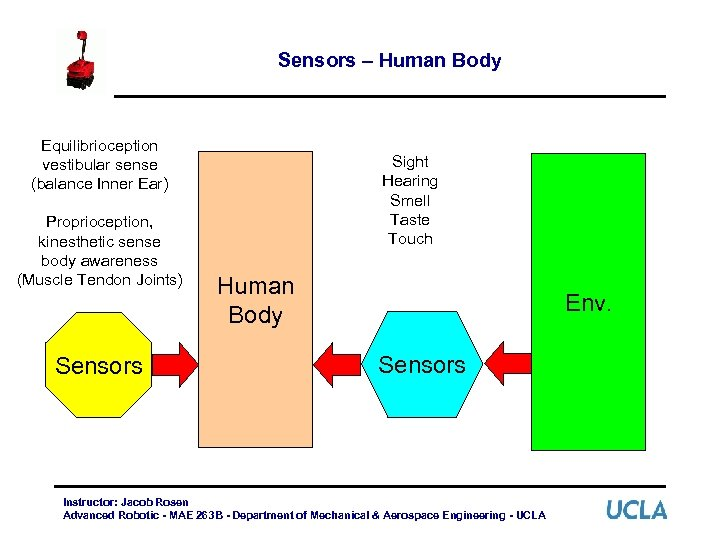 Sensors – Human Body Equilibrioception vestibular sense (balance Inner Ear) Proprioception, kinesthetic sense body