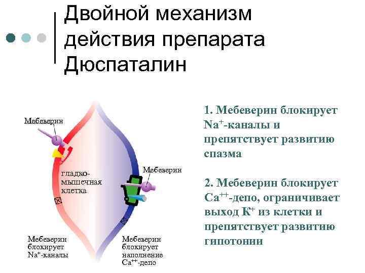 Двойной механизм действия препарата Дюспаталин 1. Мебеверин блокирует Na+-каналы и препятствует развитию спазма Мебеверин