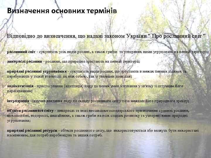 Визначення основних термінів Відповідно до визнеачення, що надані законом України