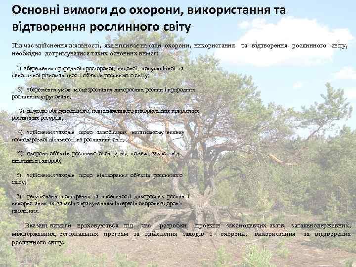 Основні вимоги до охорони, використання та відтворення рослинного світу Під час здійснення діяльності, яка