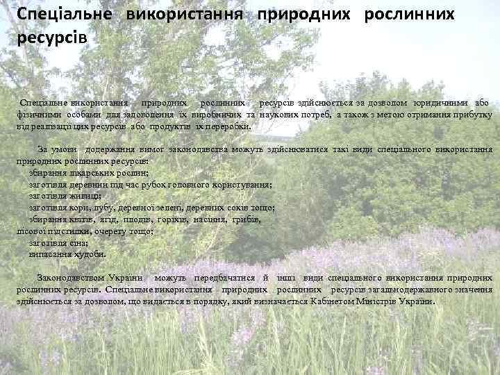 Спеціальне використання природних рослинних ресурсів здійснюється за дозволом юридичними або фізичними особами для задоволення