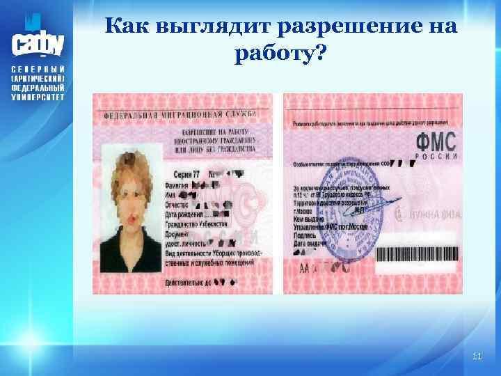 Как выглядит разрешение на работу? 11