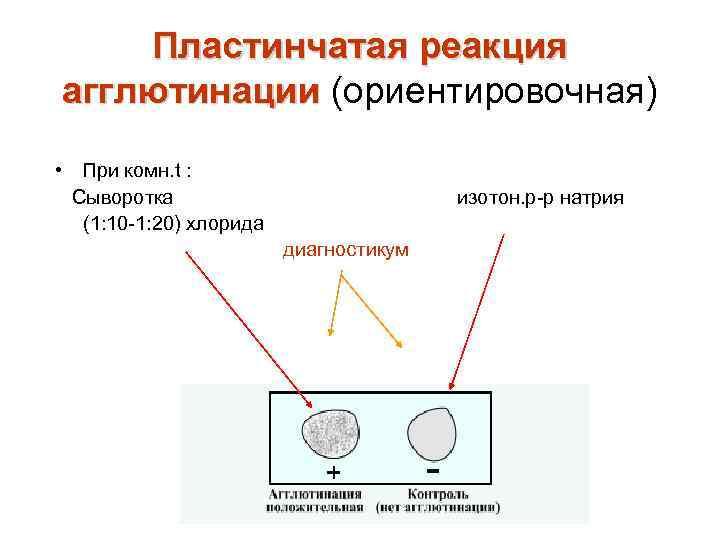 Пластинчатая реакция агглютинации (ориентировочная) • При комн. t : Сыворотка (1: 10 -1: 20)