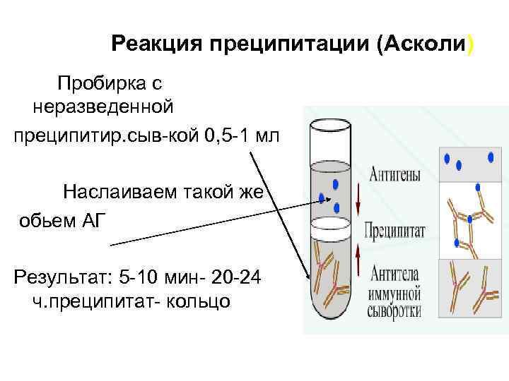 Реакция преципитации (Асколи) Пробирка с неразведенной преципитир. сыв-кой 0, 5 -1 мл Наслаиваем такой