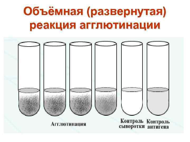 Объёмная (развернутая) реакция агглютинации