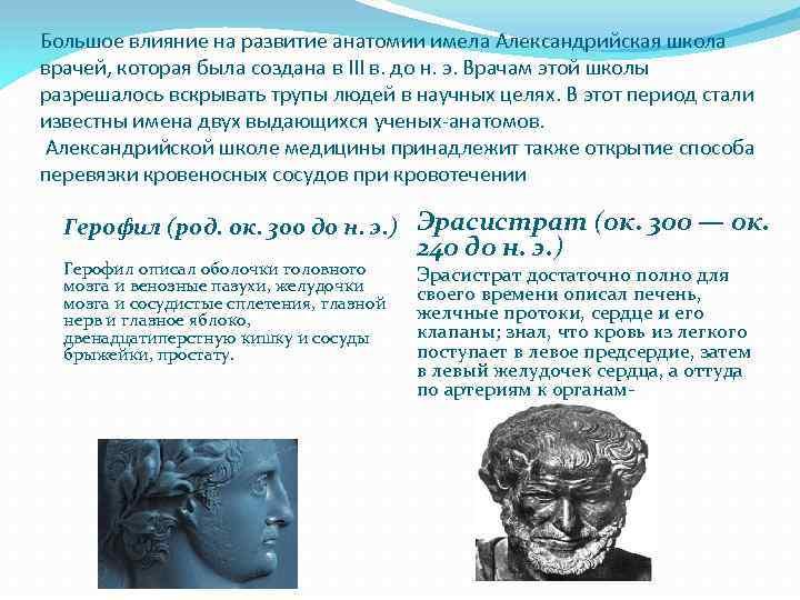 Краткая история развития анатомии и физиологии реферат 6133