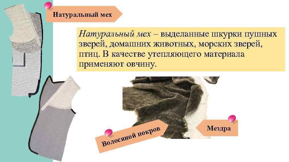 Натуральный мех – выделанные шкурки пушных зверей, домашних животных, морских зверей, птиц. В качестве