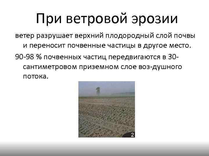 При ветровой эрозии ветер разрушает верхний плодородный слой почвы и переносит почвенные частицы в