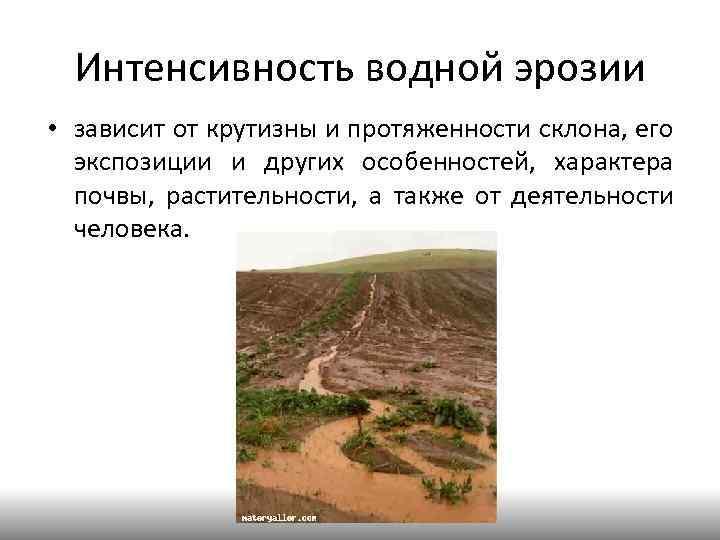 Интенсивность водной эрозии • зависит от крутизны и протяженности склона, его экспозиции и других