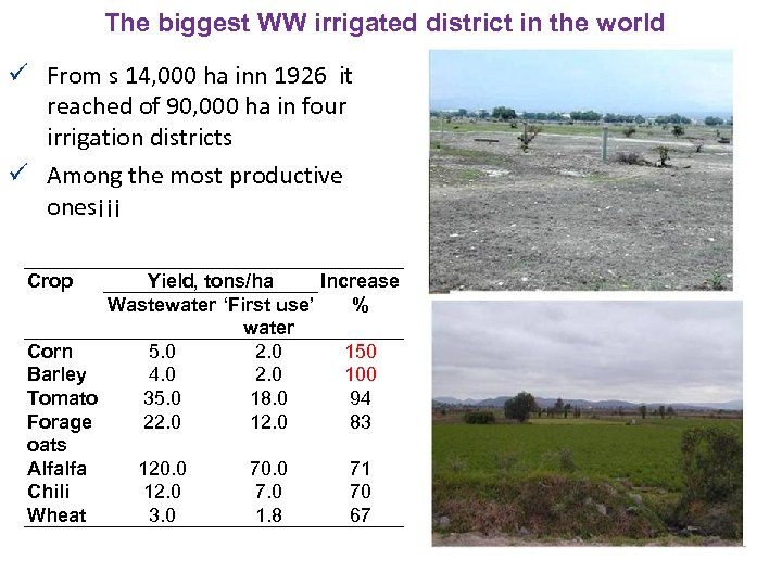 The biggest WW irrigated district in the world ü From s 14, 000 ha