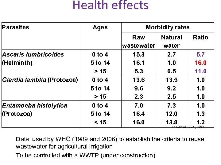 Health effects Parasites Ascaris lumbricoides (Helminth) Giardia lamblia (Protozoa) Entamoeba histolytica (Protozoa) Ages 0