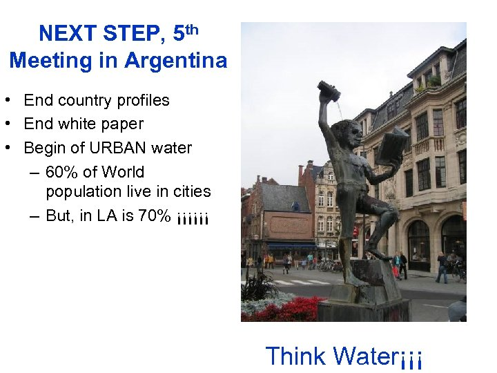 NEXT STEP, 5 th Meeting in Argentina • End country profiles • End white