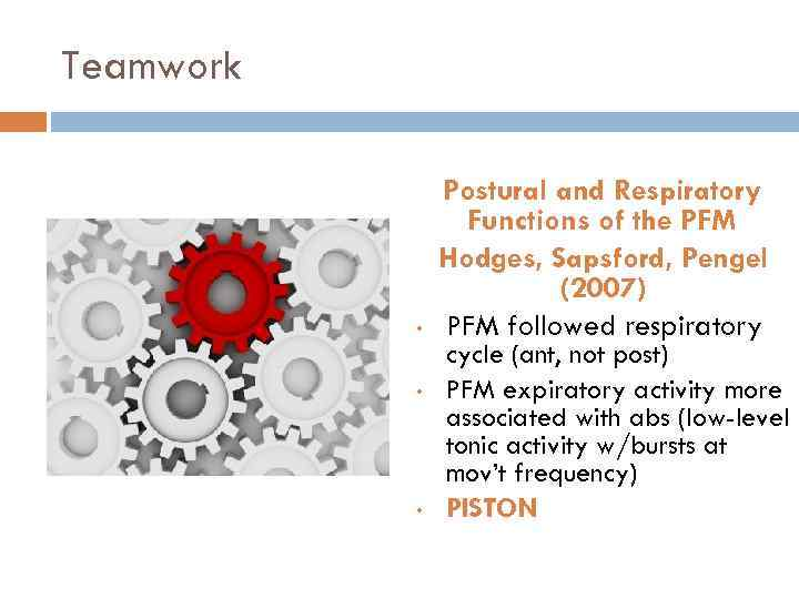 Teamwork • • • Postural and Respiratory Functions of the PFM Hodges, Sapsford, Pengel